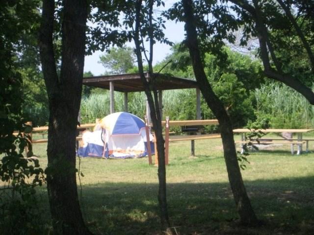 Camping les Chenes à Junas